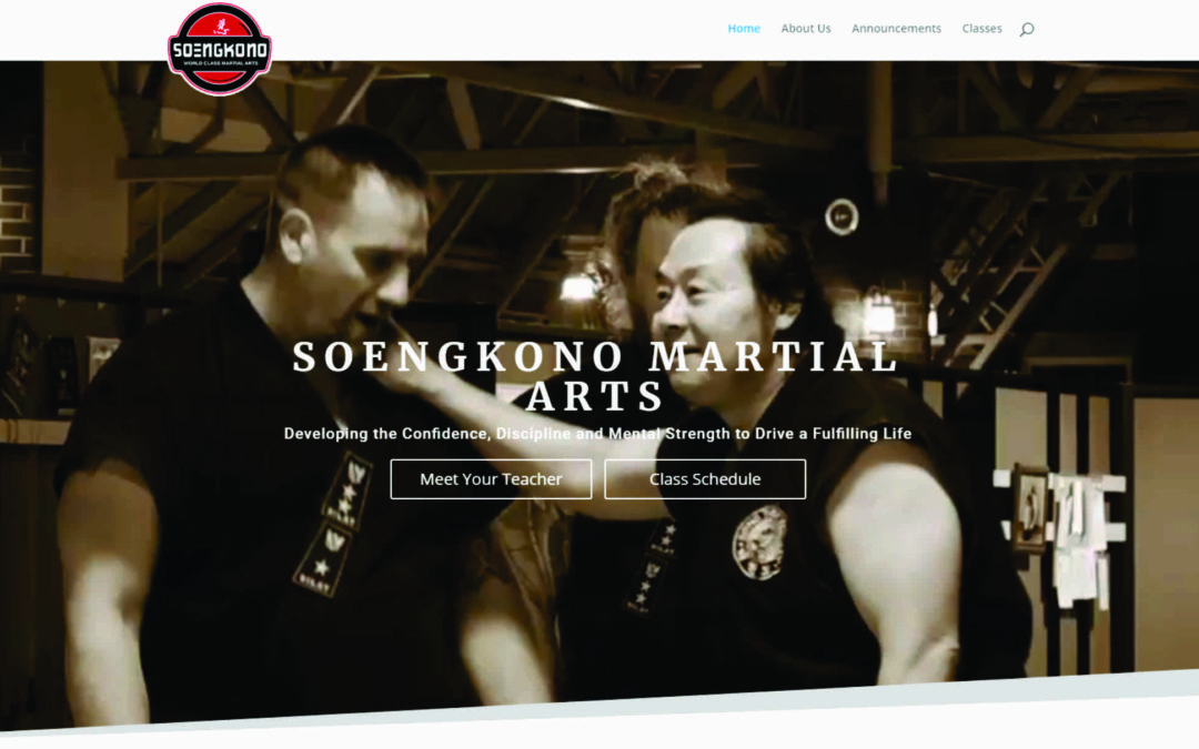 The New Home of Soengkono World Class Martial Arts Online