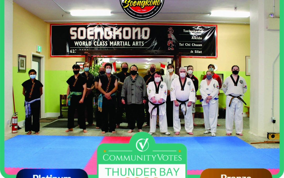 We've Won Platinum in the Thunder Bay CommunityVotes Martial Arts Category!